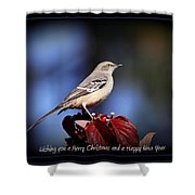 Mockingbird Holidays Shower Curtain