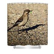 Mockingbird Meal Shower Curtain