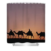 Modern Egyptians Riding Domesticated Shower Curtain