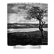 Moisonnerie Bw Shower Curtain