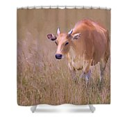 Molly Bloom Shower Curtain