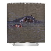 Mom And Baby In The Mara River Shower Curtain