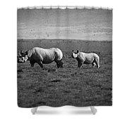Mom And Child Black Rhinos Shower Curtain