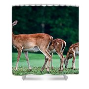 Mom With Twins Shower Curtain