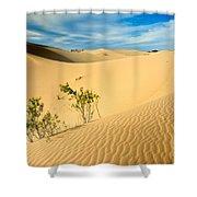 Monahands Sandhills State Park Texas Shower Curtain