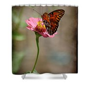 Monarch Beauty Shower Curtain