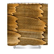 Monarch Butterfly Scales, Sem Shower Curtain