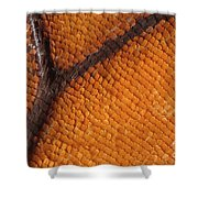 Monarch Butterfly Wing Scales Shower Curtain