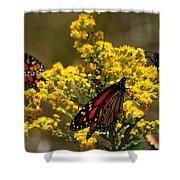 Monarchs On Yellow Shower Curtain