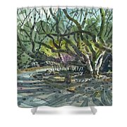 Monk Trees Two Shower Curtain