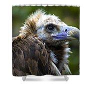 Monk Vulture Shower Curtain