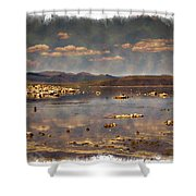 Mono Lake - Impressions Shower Curtain