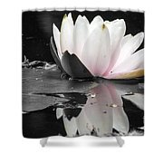 Monochrome Lily Shower Curtain