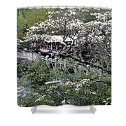 Montreat In Spring Shower Curtain