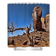 Monument Valley Lone Tree Shower Curtain