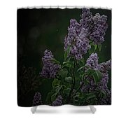 Mood Lilac Shower Curtain
