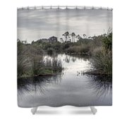 Moody Marsh Shower Curtain