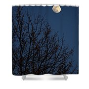 Moon And Trees Shower Curtain