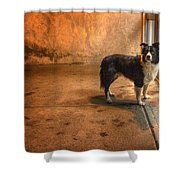 Moon At The Door Shower Curtain