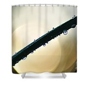 Moon Drops Shower Curtain by Kaye Menner