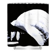 Moon Flux Shower Curtain