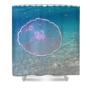 Moon Jelly Shower Curtain
