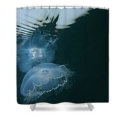 Moon Jelly Ripples Shower Curtain
