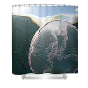Moon Jelly Rise Shower Curtain