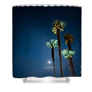 Moon Light And Palm Trees Shower Curtain