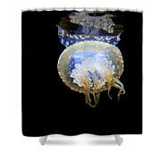 Moon Lit Jelly Shower Curtain