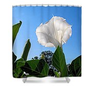 Moonflower Rising Shower Curtain