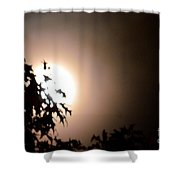 Moonlit Oak Shower Curtain