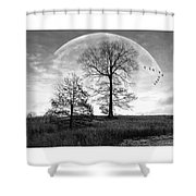 Moonlit Silhouette Shower Curtain