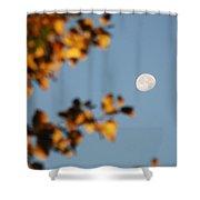 Moonset Morning Shower Curtain
