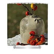 Moonshine Jug And Pumpkin On A Stick Shower Curtain