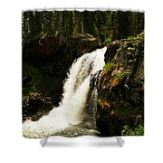 Moose Falls Shower Curtain