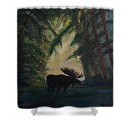 Moose Pond Hideout Shower Curtain