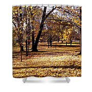 More Fall Trees Shower Curtain