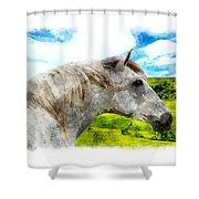 Morisco Summer Shower Curtain