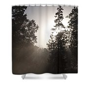 Morning At Valley Forge Shower Curtain