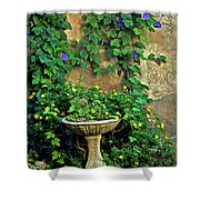 Morning Glory Garden In Provence Shower Curtain