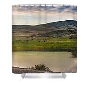 Morning Grazing Shower Curtain