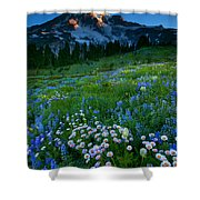 Morning Majesty Shower Curtain