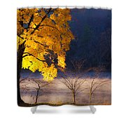 Morning Maple Ll Shower Curtain