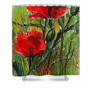 Morning Poppies Shower Curtain