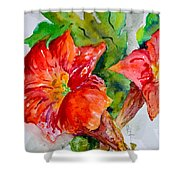 Morning Revelry Shower Curtain