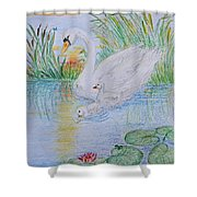 Morning Swim I  Original Colored Pencil Drawing Shower Curtain