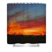 Morning's Magical Light Shower Curtain