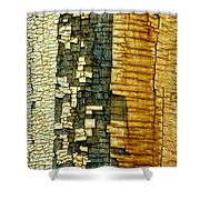 Mosaic Of Time Shower Curtain