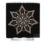 Mosaic Work Of Sepia Art  Shower Curtain